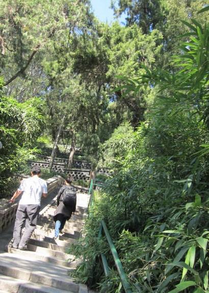 景山への階段.JPG