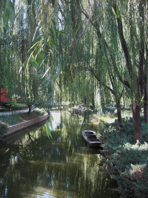 河と古船と柳.JPG