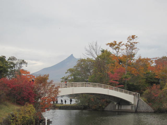 2・大沼国定公園駒ヶ岳2.JPG