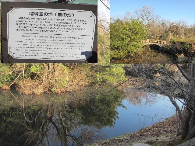 84番屋島寺・瑠璃宝の池・2.JPG