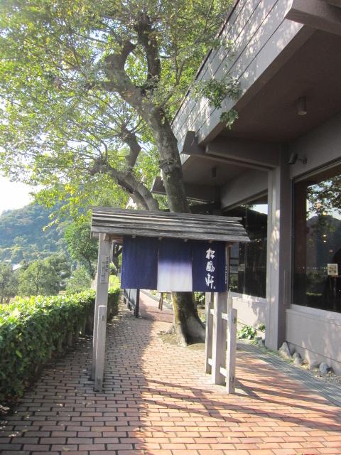 2・仙巌園大木2.JPG